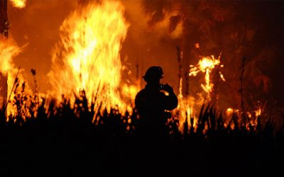 Audio Recordings of The Nature of Fire and Prescribed Burns on the South Coast